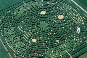 labyrinthe-vert